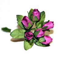 Бутоны роз цвета фуксии
