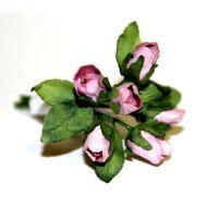 Темно-розовые бутоны роз