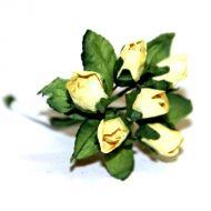 Светло-жёлтые бутоны роз