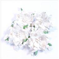 Белые гардении 5-6 см