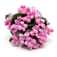 Букетик из розовых ягодок