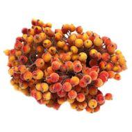 Букетик ягод желто-красных в сахаре