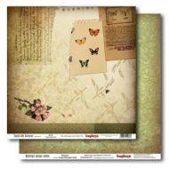 Бумага ботаника, коллекция внутри моего лета