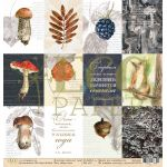 Бумага карточки, коллекция осенний лес