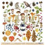 Бумага лесные жители, коллекция осенний лес