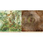 Бумага лишайник, коллекция осенний лес