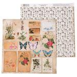 Бумага плашки, коллекция La Botanique