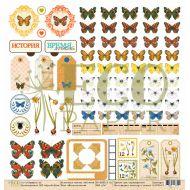 Бумага воспоминания, коллекция атлас бабочек