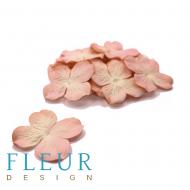 Гортензия розово-кремовая 5 см