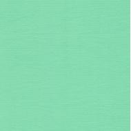 Кардсток персидский зелёный 30 х 30 см