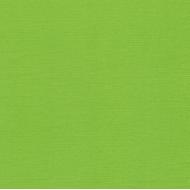 Кардсток светлая зелень 30 х 30 см