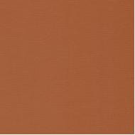 Кардсток светло-коричневый 30 х 30 см