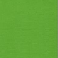 Кардсток зеленый травяной 30 х 30 см