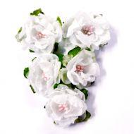 Набор цветов Дикая роза белая