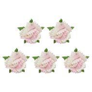 Набор гвоздик бело-розовых