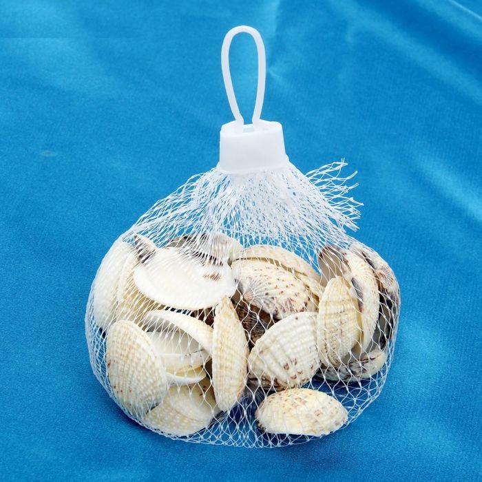 Набор морских раковин 7 для скрапбукинга