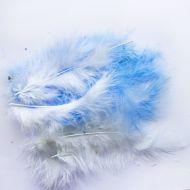 Перья голубые и белые