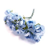 Розы голубые