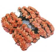 Розы оранжевые