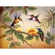 Схема колибри
