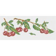Схема ветка вишни