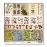 Бумага в поход за грибами 1, коллекция в лесу