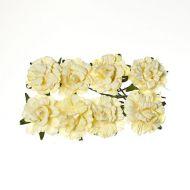 Кремовые кудрявые розы