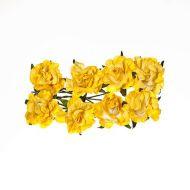 Нежно-жёлтые кудрявые розы