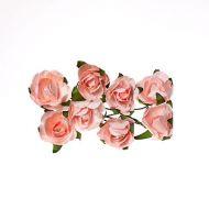 Розы нежно-розовые