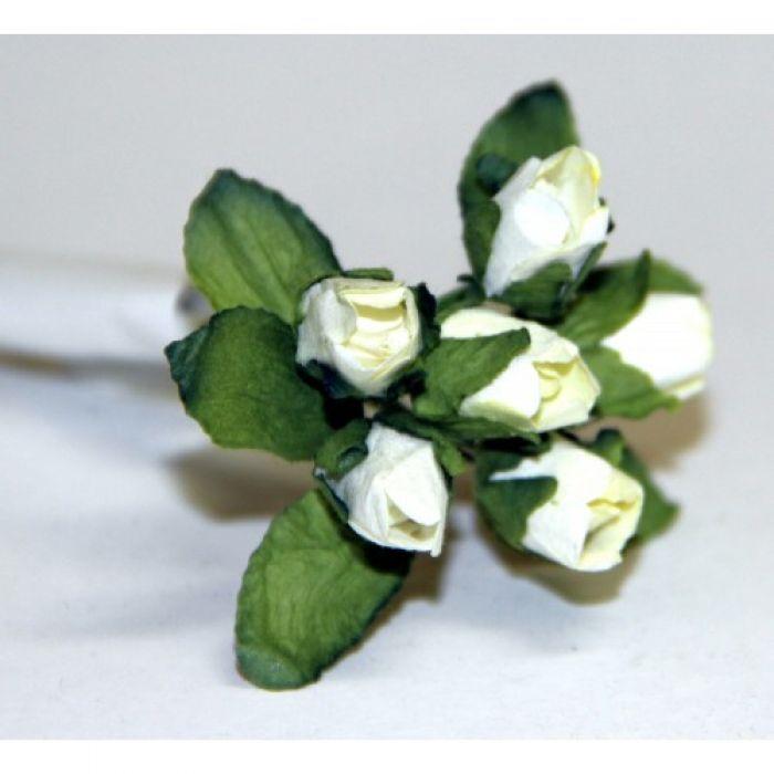 Бело-зеленые бутоны роз для скрапбукинга
