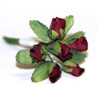 Бордовые бутоны роз