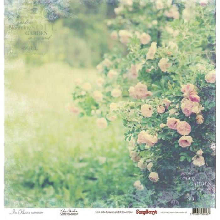 Бумага дикие розы, коллекция цветущий сад для скрапбукинга