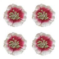 Цветы анемоны красно-белые