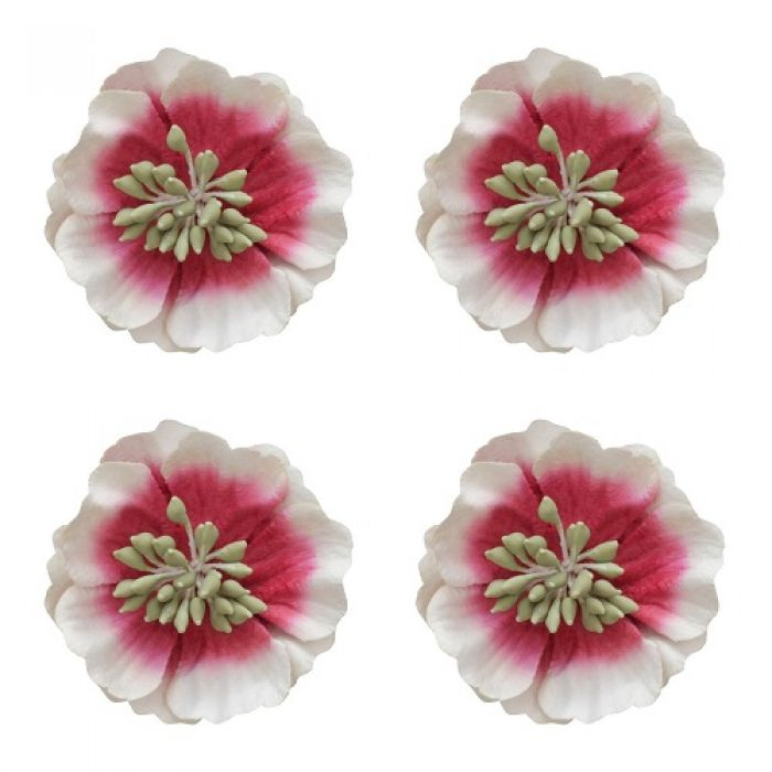 Цветы анемоны красно-белые для скрапбукинга