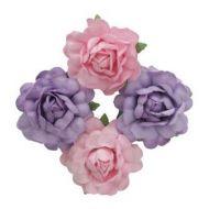 Цветы чайной розы розовые и фиолетовые