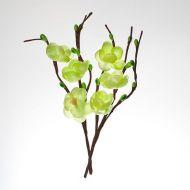 Цветы вишни из ткани зелёные