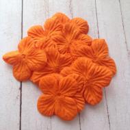 Гортензии оранжевые 3,5 см