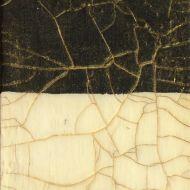 Кракелюрный лак двушаговый старинный фарфор