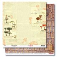 Бумага справочник грибника, коллекция в лесу