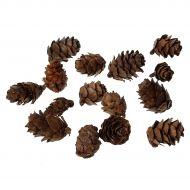 Кедровые орехи натуральные 46x25 мм