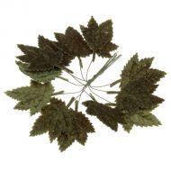 Кленовый лист бархатный
