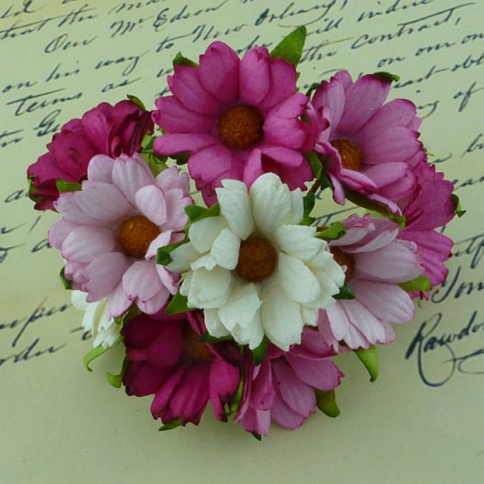 Хризантемы бело-розовые для скрапбукинга