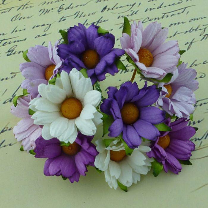 Хризантемы бело-лилово-пурпурные для скрапбукинга