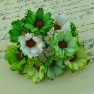 Хризантемы бело-зеленые