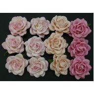 Розы, розовая смесь, 35 мм