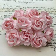 Розы дикая розовая, 40 мм