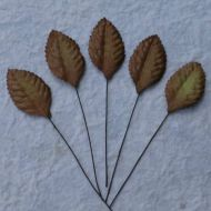 Листья коричневые, 35 мм