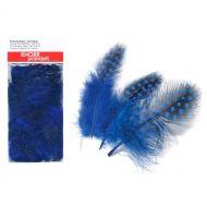 Перья цесарки темно-синие
