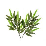 Лист бамбука