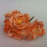 Цветы магнолии оранжевые